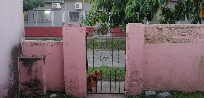 VENTA EN BLOCK – 2 VIVIENDAS DE 3 Y 4 AMBIENTES